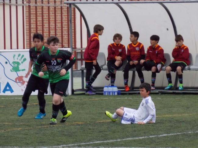 Foto del partido de liga Canillas D - EDM Alevín B
