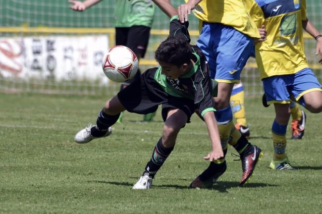 Foto del partido de liga Santa Ana B - EDM Cadete C