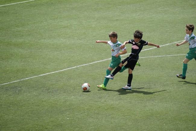 Foto del partido de liga AFE 3 - 0 EDM Alevín C