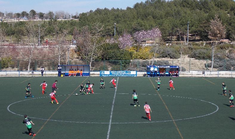 El Campo de la Dehesa tendrá césped nuevo la próxima temporada